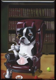 This Boston Terrier has a monocle. Your argument is invalid.