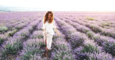 Ontario's Largest Lavender Field Will Be In Full Bloom For The Summer featured image Vacation Pictures, Travel Pictures, Vacation Ideas, The Places Youll Go, Places To Go, Ontario Travel, Canadian Travel, Canadian Rockies, Lavender Fields