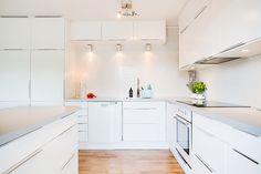 Modern Scandinavian/Nordic kitchen