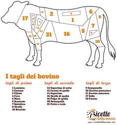 I tagli di carne bovina: come riconoscerli come sceglierli e come utilizzarli nelle ricette di cucina in base alle loro caratteristiche.