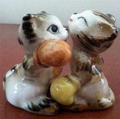 Boxing Kittens Shaker Set Salt N Pepper, Salt Pepper Shakers, Novelty  Items, Vinager