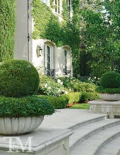 Fabulous front entry, love the boxwood in planters Providence Design