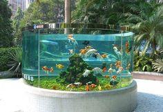 Beautiful Fish Pond Style #Pondliner #Pondliners #EPDMPondliner http://www.pondpro2000.com/