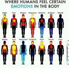 regram @peaceseekerladylight ♥What #emotions look like as #energy ♥#emotion #mentalhealthawareness #everythingisenergy #weareenergy #raiseyourvibration #healers #lightworkers #human #chakras @Regrann from @marisoul_ -  #Regrann