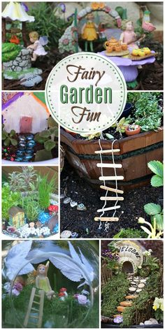 Decor DIY These adorable fairy garden ideas will definitely impress anyone who sees! Check out how to make a darling DIY Fairy Garden for indoors or outdoors! Indoor Fairy Gardens, Mini Fairy Garden, Gnome Garden, Miniature Fairy Gardens, Garden Fun, Garden Pests, Indoor Gardening, Container Gardening, Indoor Plants