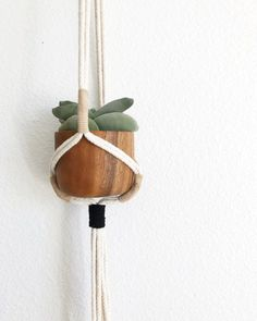 This Modern Macrame plant hanger is handmade with natural 100% cotton rope. Each hanger has suede accents in either black, beige or both creating a modern look on a classic design. There are 3 different color ways to choose from in 2 different sizes.