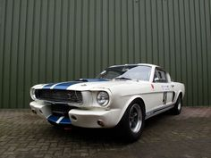 1965 Ford Mustang Shelby GT350 FIA | Car Pictures