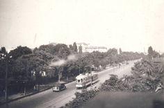 Fotografia este realizată pe Şoseaua Ştefan cel Mare, Bucureşti, în zona intersecţiei cu strada Ghiocei. În faţă se vede corpul cel mai înalt al Spitalului Colentina. În partea stângă, la şosea, erau clădiri ale Morii Comerciale. În spatele lor era Fabrica de cărămidă Tonola, unde este Circul de Stat cu parcul.