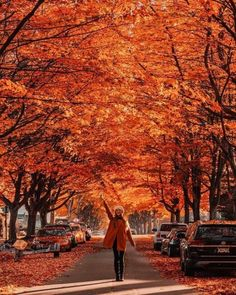 I've gone full tourist. 🙃🙃🙃Vancouver's autumn is the autumn you learn about in books, and draw as a child. Fall Pictures, Fall Photos, Tara Milk Tea, Tour Around The World, Autumn Cozy, Autumn Aesthetic, Autumn Photography, Photography Ideas, Travel Photography