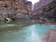 """""""Havasu Creek confluence at Colorado River - Grand Canyon,"""" by Al_HikesAZ, via Flickr"""