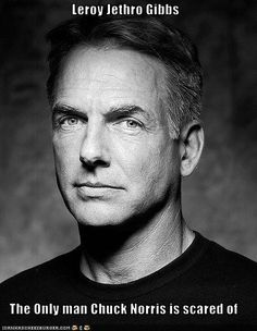 Mark Harmon as Leroy Jetro GIBBS on NCIS. He is the rock around which this show revolves.