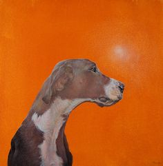 Dog Portraits & Paintings by Dana Hawk -