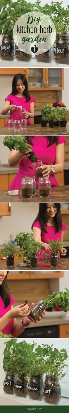 DIY Herb Garden for your kitchen!