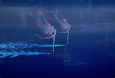 Fairies on water