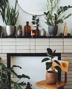 Plants On Fireplace Mantle