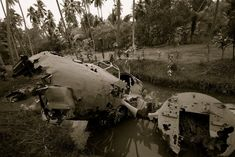 World War 2 plane in Papa New Guinean jungle