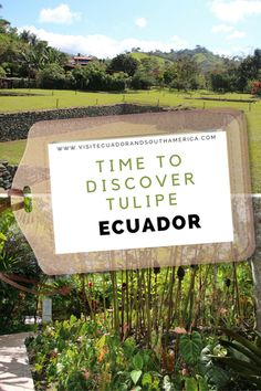 Located at Latitud 0 in a lush subtropical forest near the city of Quito in Ecuador, you can visit the unique ancestral culture of Tulipe. Spanish Speaking Countries, South America, Latin America, Just Dream, Galapagos Islands, Archaeological Site, How To Speak Spanish, Quito, Plan Your Trip