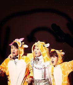 Donghae, Eunhyuk and Ryeowook