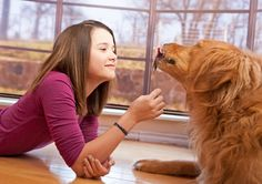National Pet Diabetes Month – Know the Signs, Reduce the Risk
