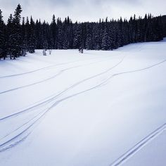 Such a sick pow day to finish off the season! #coppermountain #sognar #freshtracks