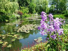 Romancing the Home - Monet's Garden