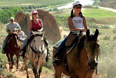 le escursioni con ridingsicily