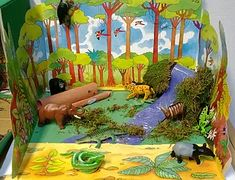 Making a rainforest diorama is a fun way to learn about life in the rainforest. These rainforest models are fun to make and look great. Rainforest Crafts, Rainforest Project, Rainforest Ecosystem, Rainforest Classroom, Rainforest Activities, Amazon Rainforest, Preschool Classroom, Animal Projects, Art Projects