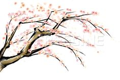꽃, 오브젝트, 한국, 나무, 봄, 수묵화, branch, 프리진, 한국그림, 동양, 페인터, 벚꽃, 동양화, 일러스트, 프리진 #유토이미지 #프리진 #utoimage #freegine 9123137