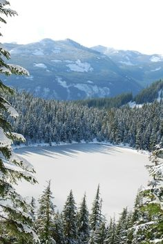 TALAPUS AND OLALLIE LAKE- this winter