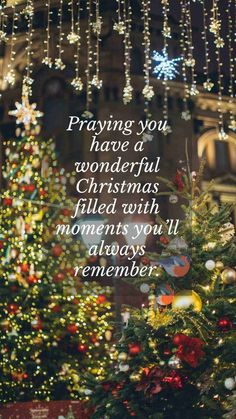 Wonderful Xmas time quotes greetings families and friends. Wishing you a magical and blissful holiday! All the best to everyone this Holiday Season! May everything on your wishlist come true. Happy Holidays. #wonderfulchristmasquotes #wonderfulchristmastime #merrychristmasgreetings Merry Christmas Quotes Jesus, Merry Christmas Wishes Text, Short Christmas Wishes, Merry Christmas Funny, Christmas Messages, Holiday Wishes, Best Christmas Gifts, Christmas Greeting Cards, Christmas Time