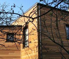 Extension bois côté jardin