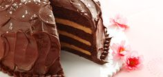 Sandra Lee Salted Caramel-Chocolate Cake- Salted Caramel-Chocolate Cake