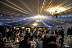 Mystique weddings and conferences, situated in the outskirts of Bulawayo, Zimbabwe Zimbabwe, Romantic, Weddings, Concert, Romantic Things, Romance Movies, Mariage, Concerts, Wedding