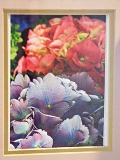 Framed Photography Hydrangea pictures White by ShabbySeasideShop