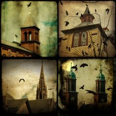 Gothic Churches - and crows