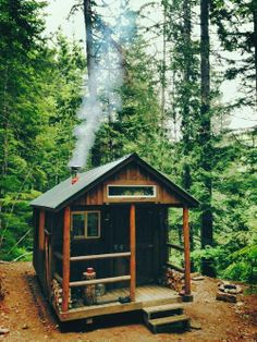 Cabin in the woods [I want one]
