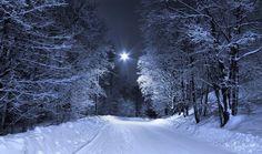 February Night by Pajunen.deviantart.com on @deviantART