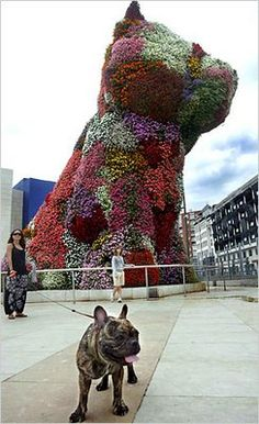 """PUBLIC ART: """"Puppy"""" is a curious and innovative piece by Jeff Koons. The sculpture is made of living flowers on top of wood and stainless steel. Perhaps the most intriguing part of piece is that it features an internal irrigation system to keep the beautiful flowers alive."""