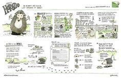 Sketchnoting BOOK - Szukaj w Google