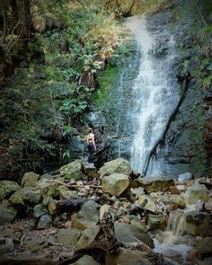 Cape Town Waterfall Africa Travel, Cape Town, South Africa, Waterfall, Adventure, Instagram Posts, Outdoor, Outdoors, Waterfalls