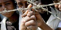 pelo fim do comércio de tortura