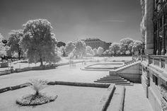 Burggarten #vienna #austria #infrared #burggarten  #neueburg #ringstrasse