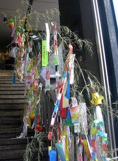 tanabata drinks