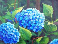 Acrylic, 16x20 painting of Blue Hydrangea