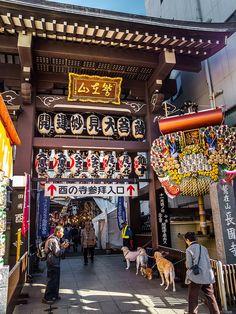 Asakusa Tori no Ichi II 3/12 Even Chokokuji Temple next door gets some of the worshippers even though technically the celebration belongs to the Otori Jinja Shrine (actually until 1868 and the seperation of Buddhism and Shinto, the temple and the shrine were one.) #Asakusa, #Tori, #Ichi, #Otori, #Jinja, #Chokokuji November 10, 2014 © Grigoris A. Miliaresis