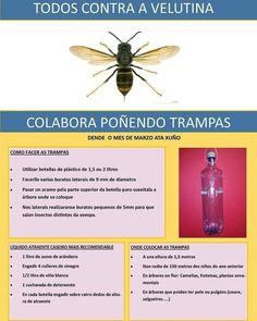 Rodrigo Gv Rodrigocho Perfil Pinterest