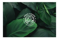 Green Fingers Branding design on Behance - Modern Tea Logo, Coffee Logo, Plant Logos, Agriculture Logo, Bussiness Card, Organic Logo, Web Design, Brand Design, Flower Logo