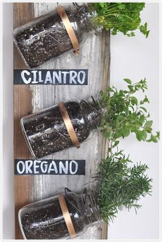Mason jars on reclaimed wood with hardware.