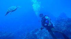 Oahu Hawaii YO-257 scuba diving with Jerry Gentile