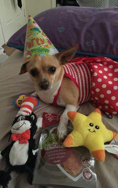 Skylar's birthday presents including her dress❤️